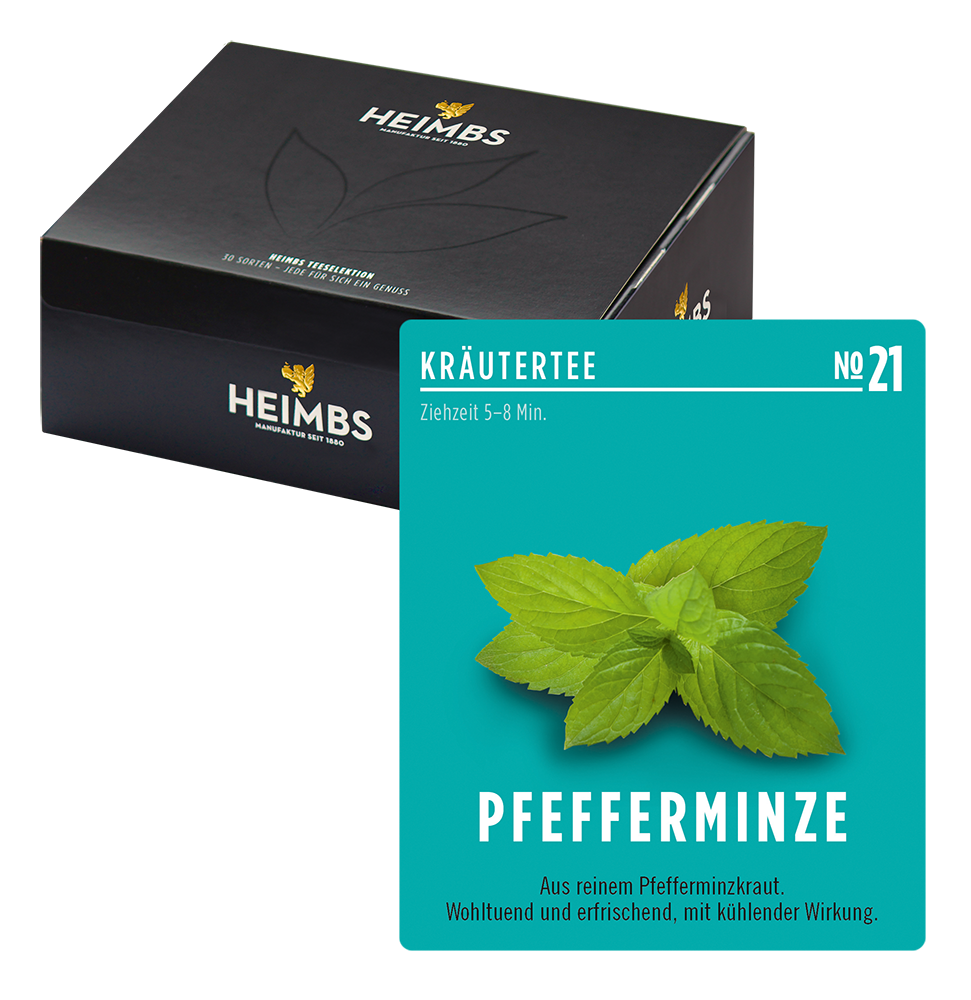Heimbs T-Pocket Pfefferminze alt